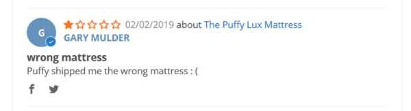 The Puffy Mattress Negative Reviews